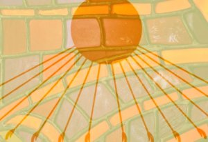 Chapter 10 sun and stained glass