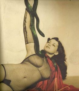 snake 5