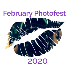 February Photofest 2020 Logo