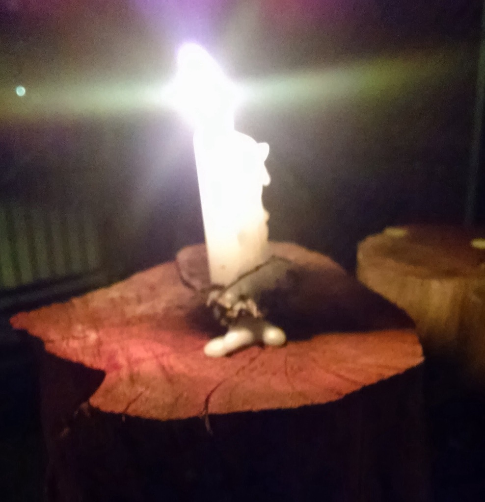 candle a top a tree stump